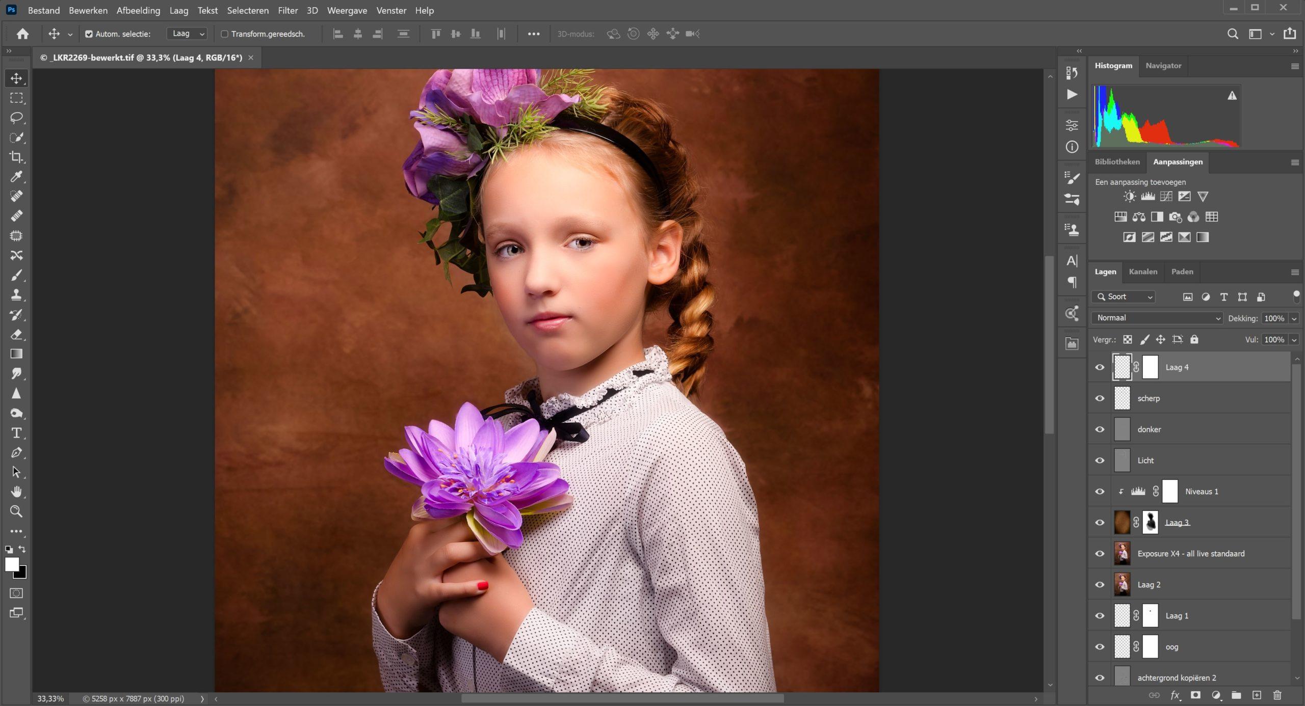 Workshop Photoshop fuer Einsteiger Papenburg